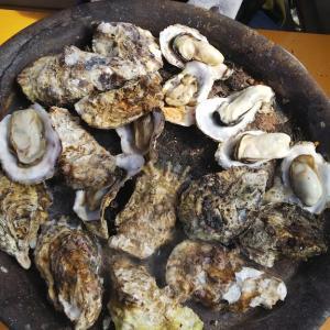 牡蠣の食べ放題&夫婦岩