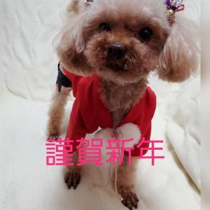 ご挨拶…m(_ _)m