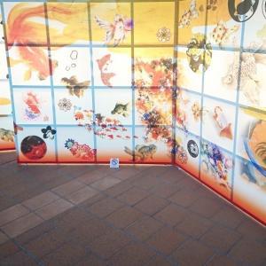 金魚美抄展2020