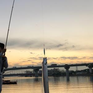 ついにタチウオ釣り上げた息子