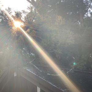 【星読み】1/18 今日の星読み 〜2日連続、開運日、到来♡ 人生が再生する。〜