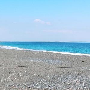 魚がいない日(^_^;)