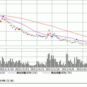 本日(7/20)の相場を振り返って・VIX短期・キャノン・アジア投資