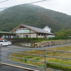 根尾川にそって山沿いに入ります 三重岐阜私鉄旅21