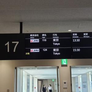 JAL118伊丹→羽田【2021 レグ2】