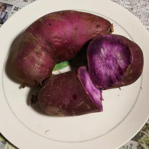 紫芋を焼芋にしてみた