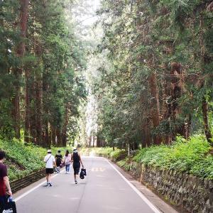 栃木県日光市で開催された第14回日光杉並木マラソンに参加してきました