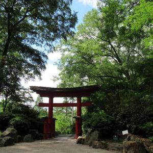 【アラバマ州】Birmingham Botanical Gardens を散策②