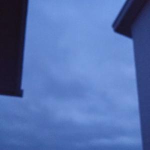 ちょっとボケちゃった朝ブルー。