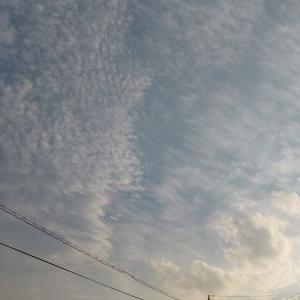 面白い雲。