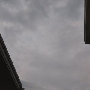 ん、また降りそうな曇り空。