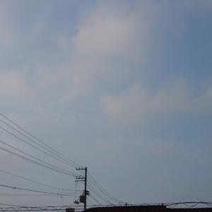 薄曇りの朝