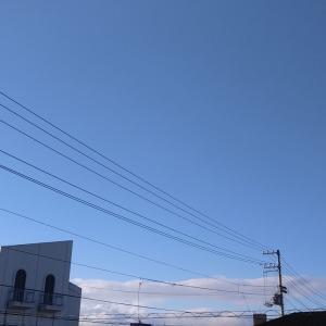 朝から暑い予感