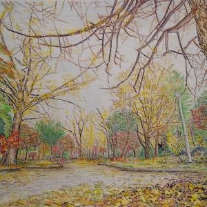 秋の公園ぬり絵、できたー。