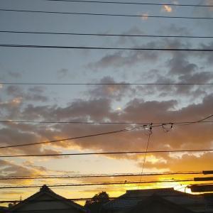 昇ってくる朝陽。
