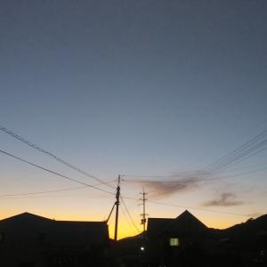 半月が南の空に、