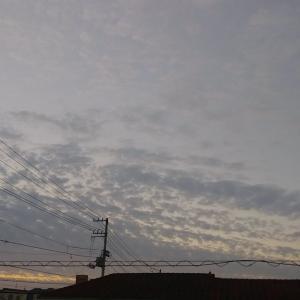 早朝の薄明かり