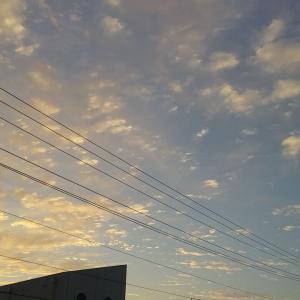 早朝の上品な色