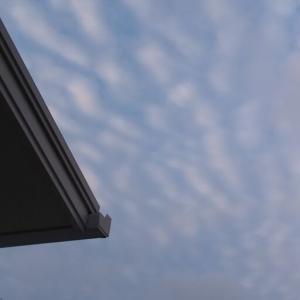 面白い波波の雲だ。