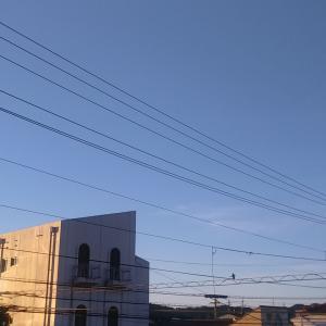 あぁ…早朝は涼しい。