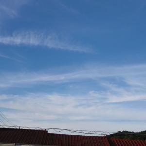 落書きしたよな朝の雲