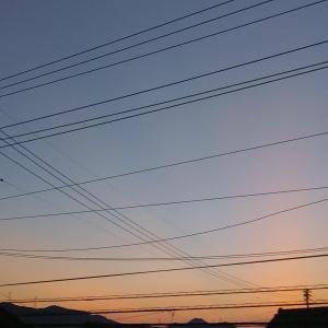 静かな夏の朝