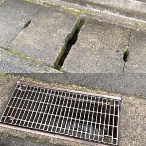 【山梨県のペットシッター】高齢犬のお散歩トラップ集