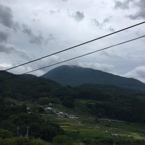 【山梨県のペットシッター】山があっても山ナシ県