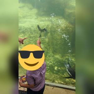 水族館へお出かけ〜