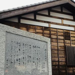 佐原あやめパーク 遊覧船と周辺の水田風景と茨城の水田