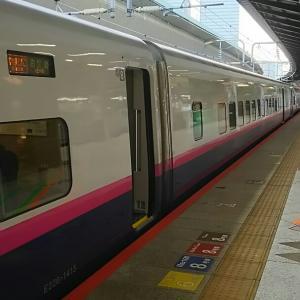 東北新幹線に揺られて
