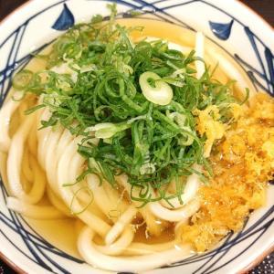 丸亀製麺vol.18