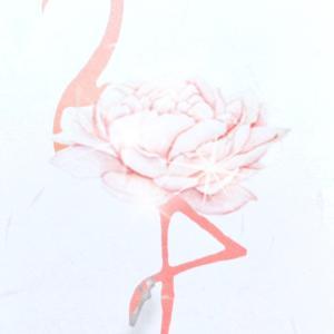★バレエスタイル flamingo ballet-style