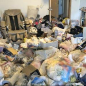 【閲覧注意!】ゴミ部屋。重い腰を上げてみた結果