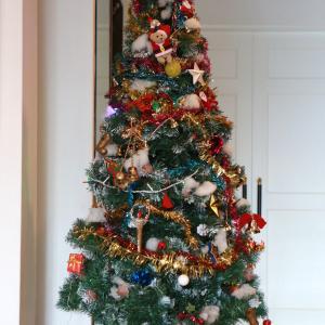 ロビーにクリスマスツリーを出しました。