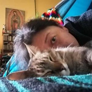 動物病院物語  Primer expeliencia de veterinario