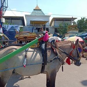 スンギギからマタラム経由でクタへ移動@ロンボク島