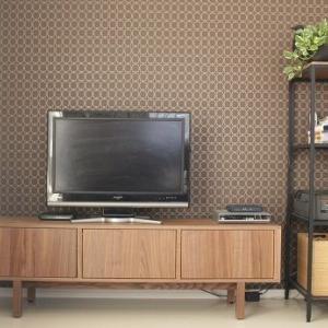 ■テレビ周りの収納(配線など)