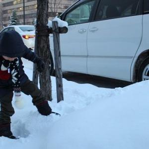 ■北海道旅行(2017.12.27~12.29)