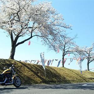 2019/04/16 出勤前のバイク神社ツーリング