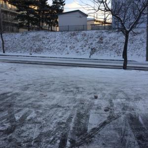 函館の朝の風景