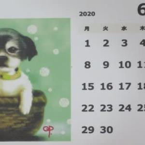 犠牲(Sacrifice) ... 6月のQPカレンダー