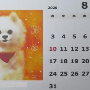 早いですけど... 8月のQPカレンダー