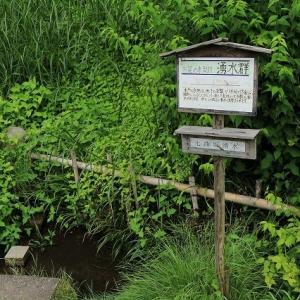 水戸八幡宮へ