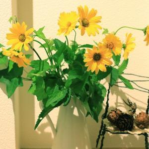 花に囲まれてみる
