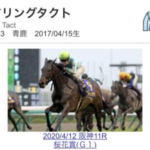 第81回優駿牝馬オークス展望(登録馬ベース)