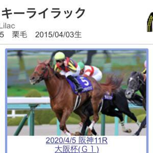 競馬選択と集中 札幌記念