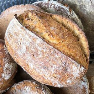オーガニックの小麦農家が焼くオーガニックパン La Bergerie