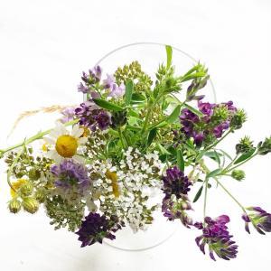 シャンペトルスタイルのブーケ 本当に野の花を摘んで再現!