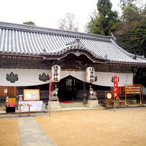 兵庫県 小野住吉神社さんでわんこ七五三。